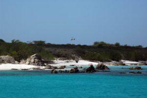 Karibische Träume / 2010-03 – Grenadinen, Venezuela, Aves Inseln, LOS ROQUES